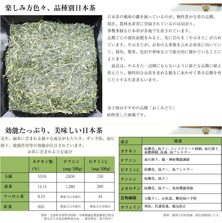 日本茶 品種