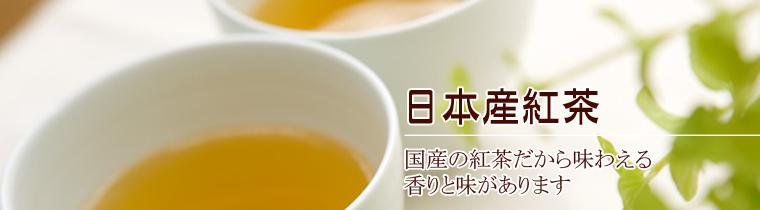 日本産紅茶